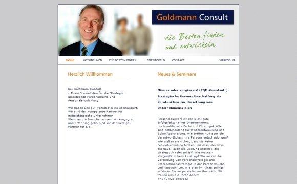 andreas menard webdesign-Goldmann Consulting